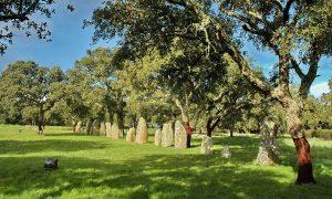 Area_archeologica_di_Pranu_Muttedu_-_Menhir_01