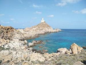la mia vacanza nell'isola dell'Asinara
